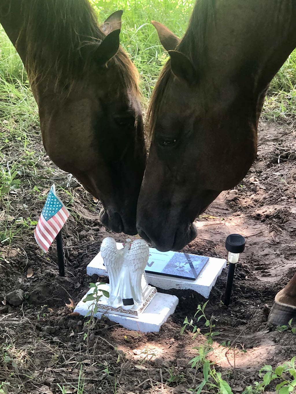 horse-memorial
