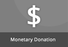 Monetary Sponsorship